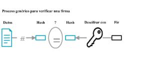 Gráfico proceso genérico verificar firma en bitcoin